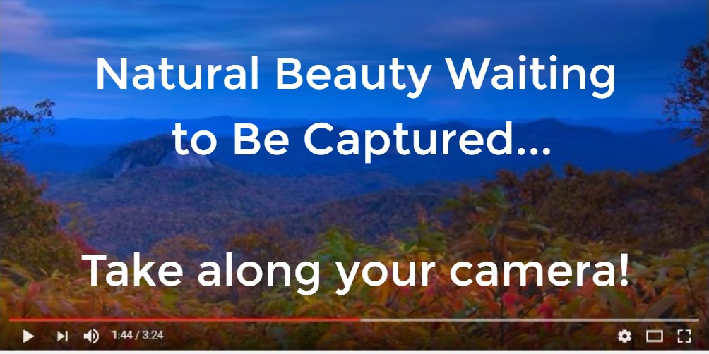 North Carolina natural beauty waiting to be captured